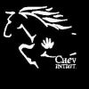 Cheval Intuition asbl